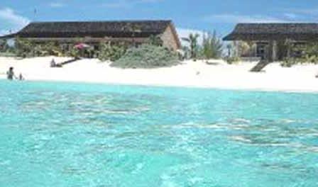 cat island dive resorts