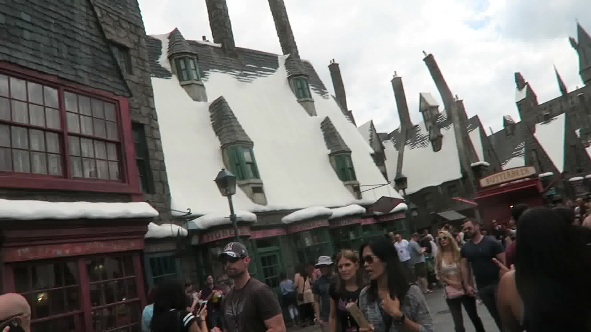 harry potter trip