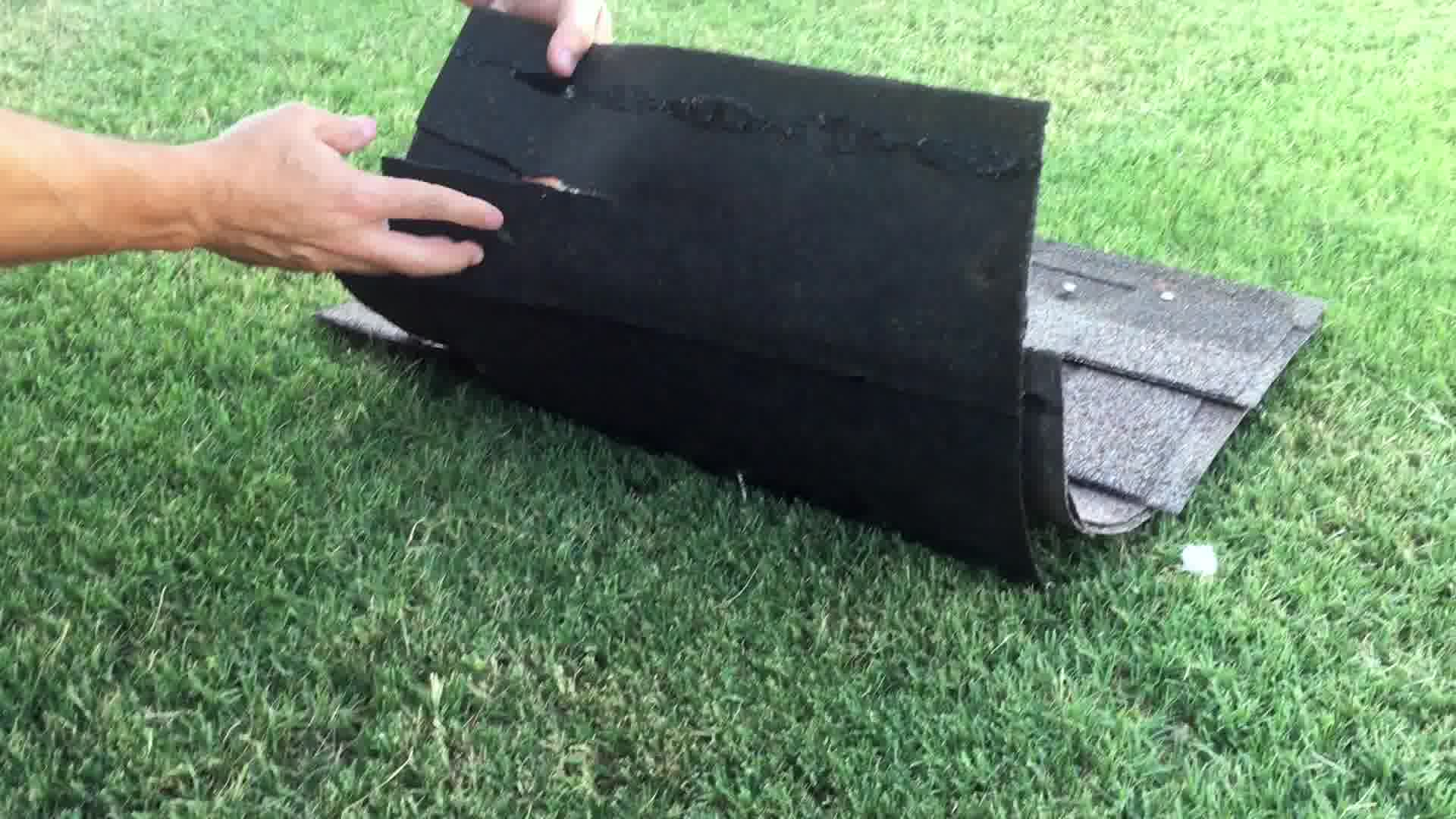 what hail damage looks like on a roof