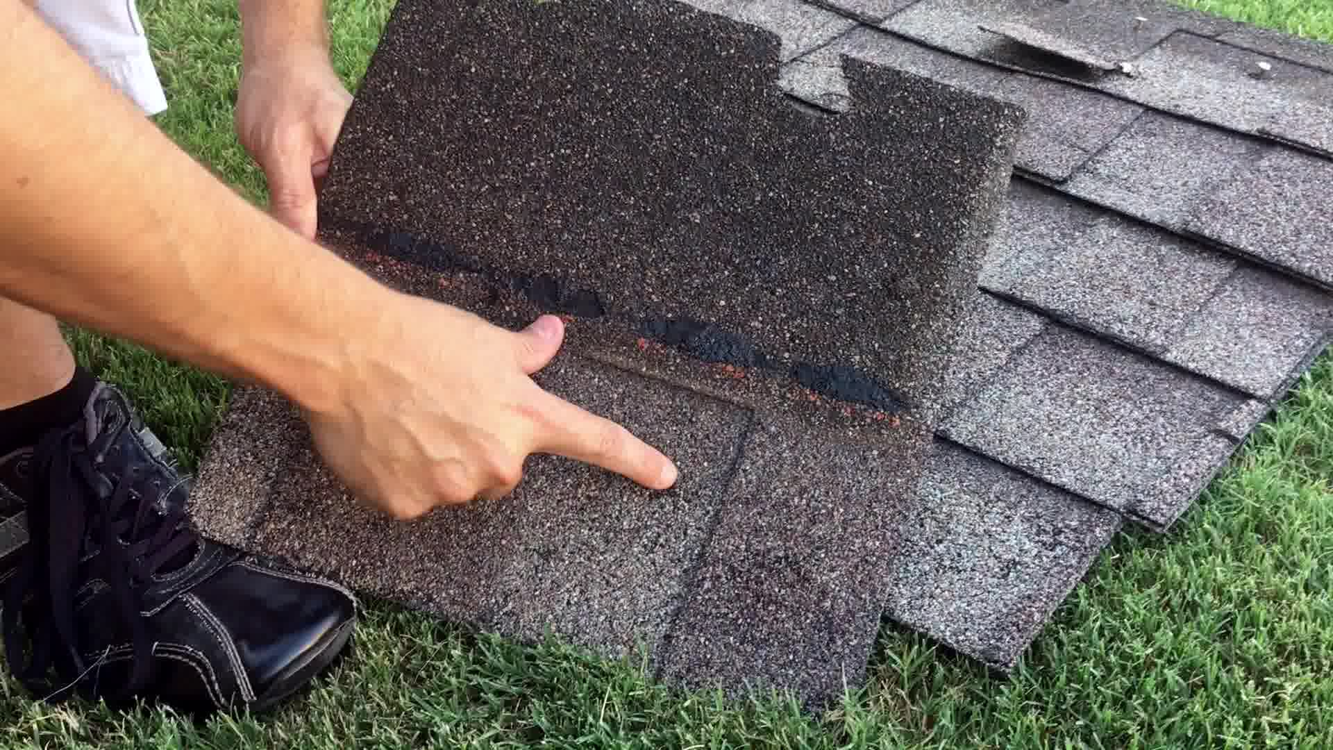 what does hail look like on shingles